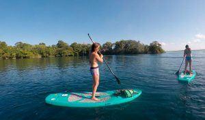 paddle board laguna de bacalar quintana roo