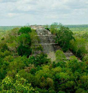 Tour-Calakmul