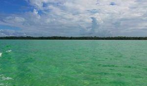 tour en la isla de tamalcab